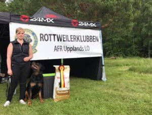 I mästarklass Evelina Esbjörnsson med Annerotts Lorenzo 77 poäng