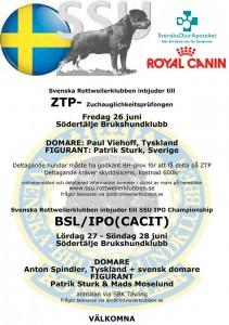ZTP IPO